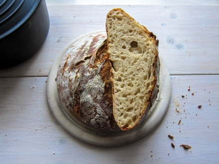No knead Sourdough
